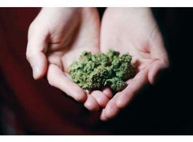 How to smoke marijuana for the first time: 10 tips