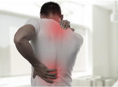The use of CBD against muscle pain