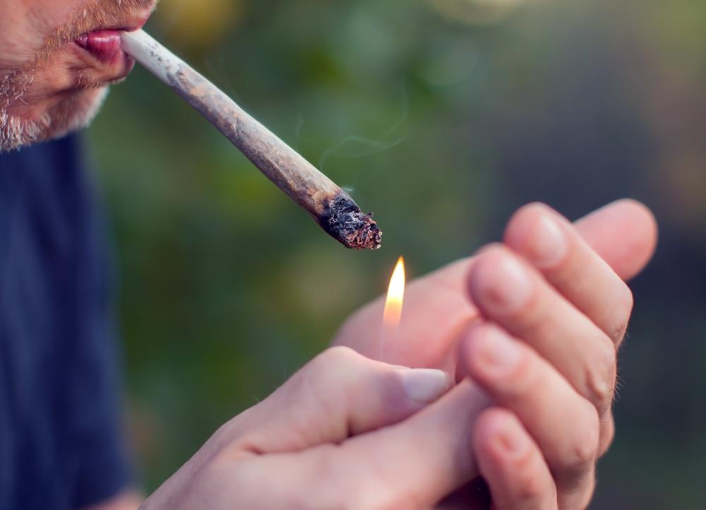 AmsterdamMarijuanaSeeds.com