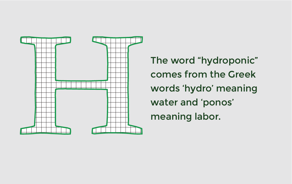 Meaning of the word hydroponic