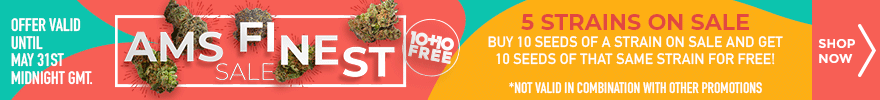 AMS finest Sale - Buy 10 seeds of a strain on sale and get 10 seeds of that same strain for free - 5 strains on sale - offer valid until May 31st midnight GMT - SHOP NOW