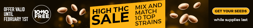 High THC Sale - Mix and match 10 top strains - offer valid until March 2nd - SHOP NOW