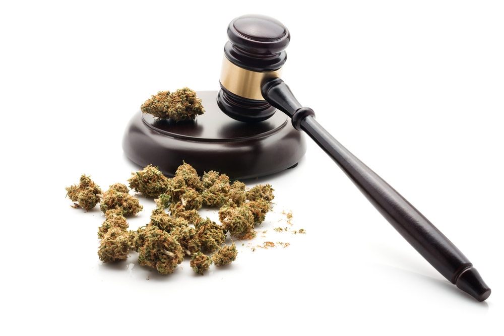 court cases about cannabis