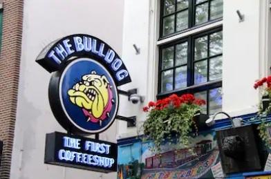The_bulldog_amsterdam